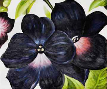 Georgia O'Keeffe Black and Purple Petunias (#156) • 16x20 • Tier 3