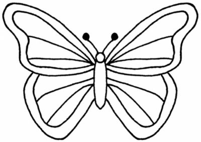 butterfly outline clip art clipartscoPNG butterfly outline clip art