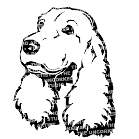Dog-AmericanWaterSpaniel