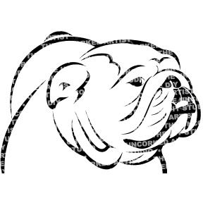 Dog-Bulldog
