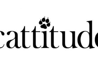 Cattitude-16x6