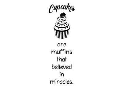 CupcakesAreMuffinsWhoBelieved-6x16