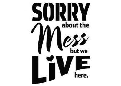 SorryAboutTheMess-12x15