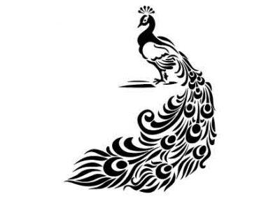 Peacock-9x12