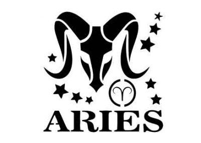 Aries-12x12