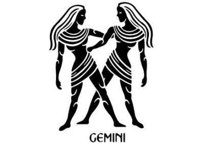 Gemini-9x12